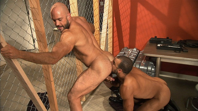 TitanMen bearded alphamale Jesse Jackman ass fucked bottoms Roman Wright 2 download full movie torrents and gay porn photo gallery Titan Men: Jesse Jackman with Roman Wright