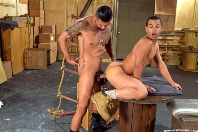 Boomer-Banks-and-Trelino-Raging-Stallion-gay-porn-stars-gay-streaming-porn-movies-gay-video-on-demand-gay-vod-premium-gay-sites-001-male-tube-red-tube-gallery-photo
