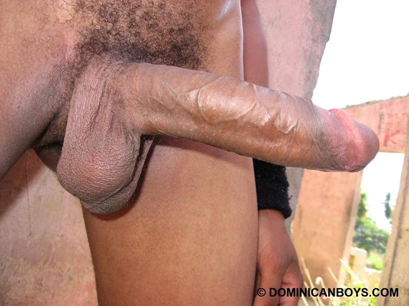 DominicanBoys smooth sexy Haward huge uncut cock erect cock erect free gay photo
