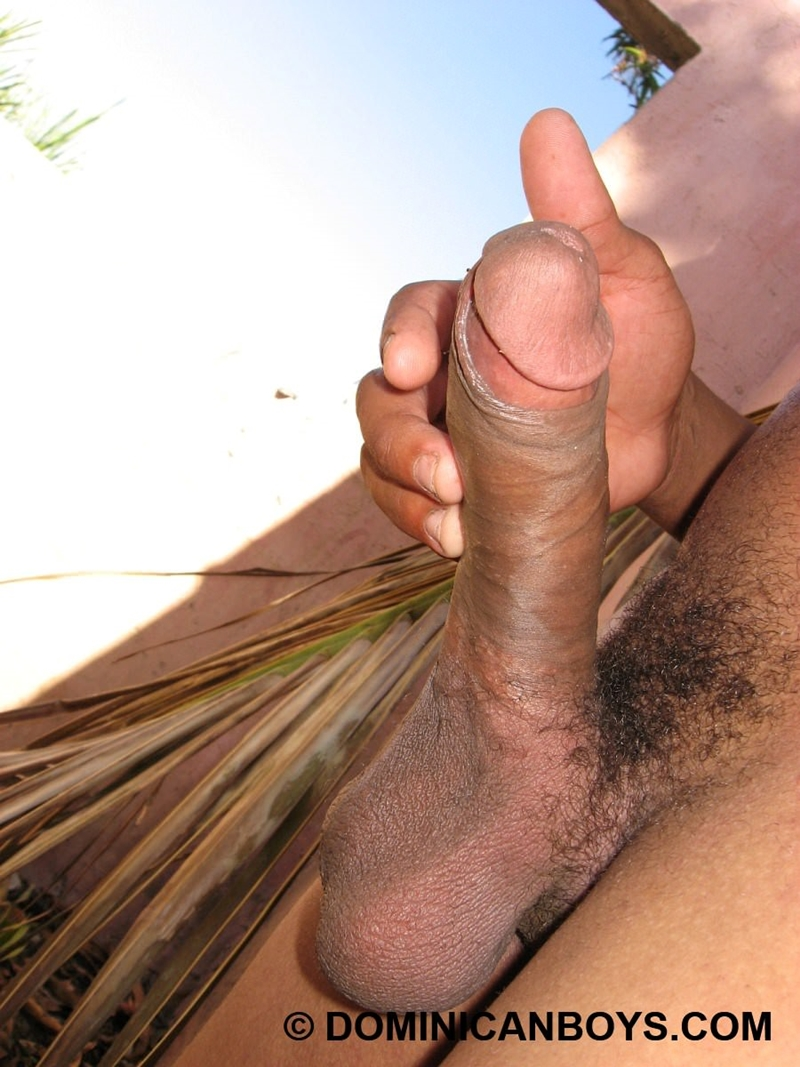 DominicanBoys-smooth-sexy-Haward-huge-uncut-cock-erect-grows-9-inch-22-years-old-black-dude-works-uncle-banana-farm-008-tube-download-torrent-gallery-photo