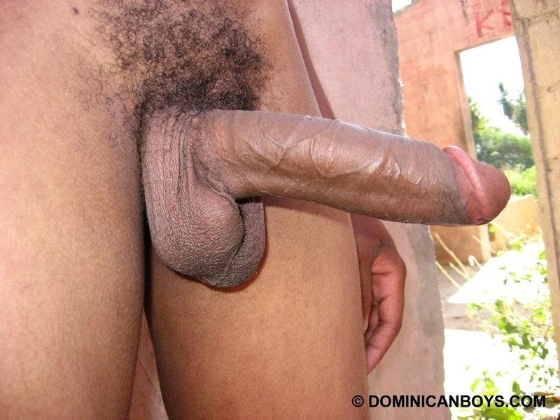 DominicanBoys-smooth-sexy-Haward-huge-uncut-cock-erect-grows-9-inch-22-years-old-black-dude-works-uncle-banana-farm-009-tube-download-torrent-gallery-photo