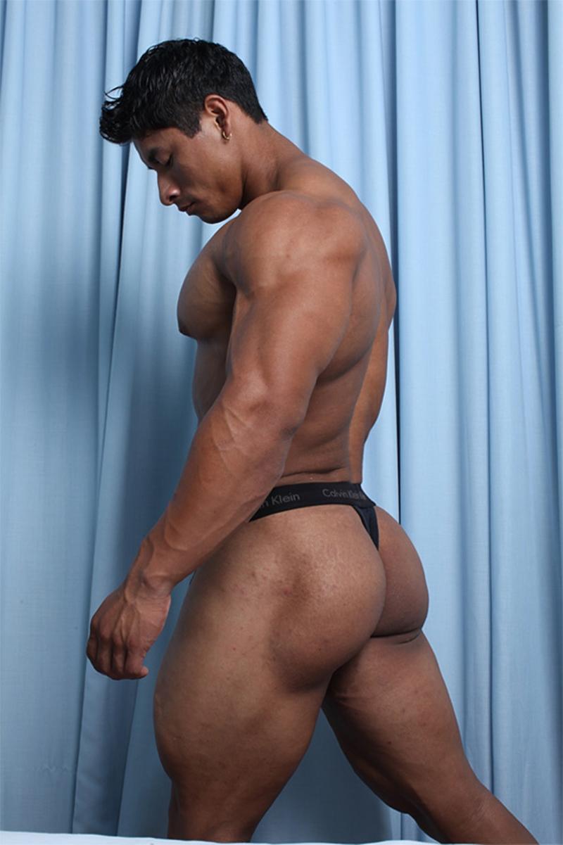 travis gay porn star