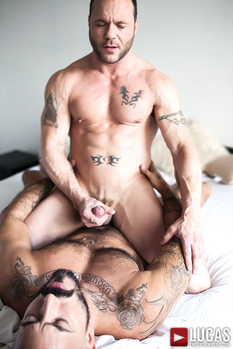 Gay Porn Gay Male Tube