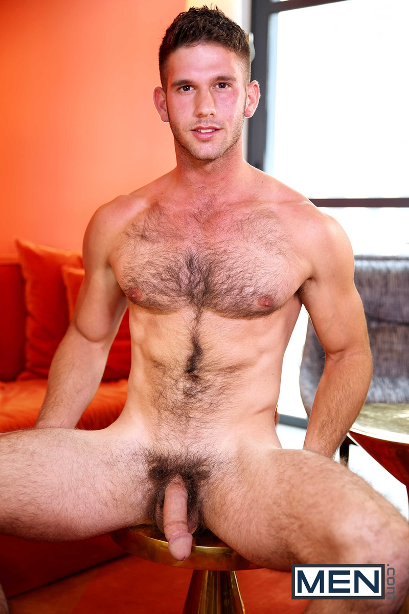 hairy gay chests