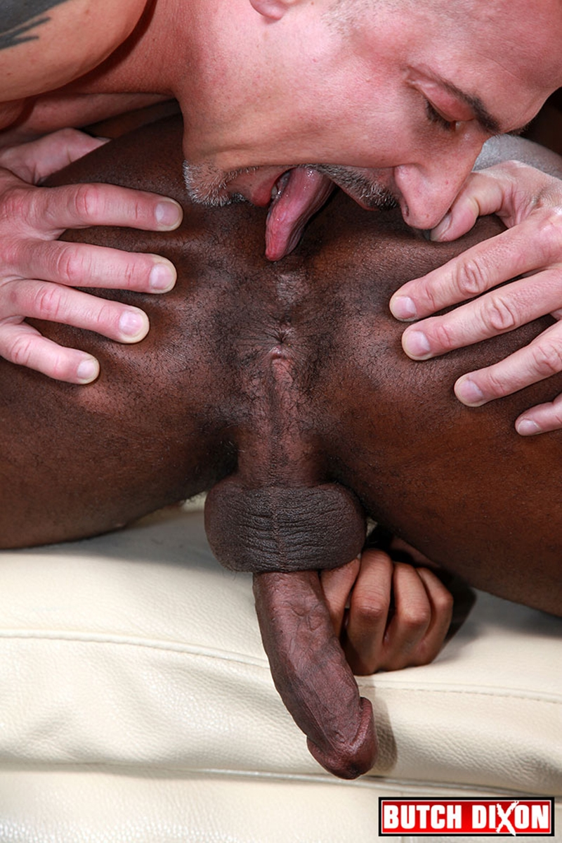 rock hard gay cock videos