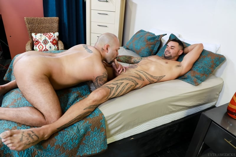 Gay men fucking big cocks on beds pictures Sexy Tattooed Stud Tegan Reigns Huge Cock Fucks Big Daddy Jd Travis Tight Butt Free Naked Gay Men Big Dicks